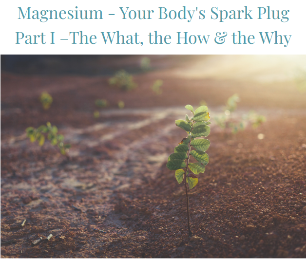 Magnesium - Your Body's Spark Plug Part I –The What, the How & the Why