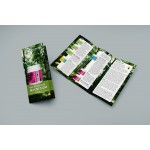 MAG365 Trifold Brochure EN - Ten Pack