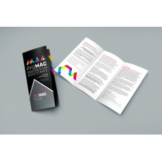 PrizMAG Trifold Brochure EN - Ten Pack